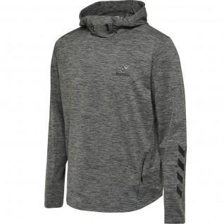 Sweatshirt à capuche Hummel hmllaston