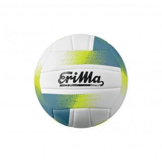 Ballon Allround Erima Volley-ball T5