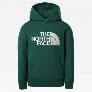Sweatshirt à capuche enfant The North Face Drew Peak