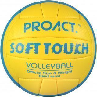 Ballon Volley Proact