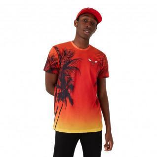 T-shirt New Era NBA Chicago Bulls summer city logo